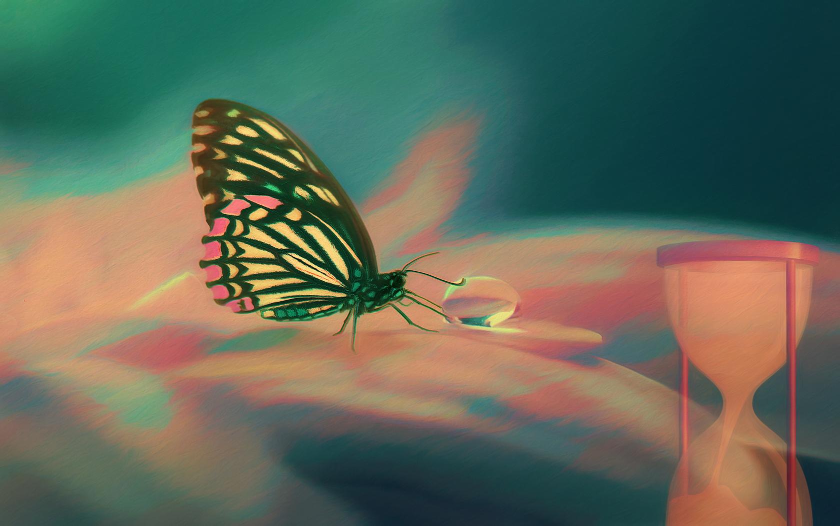 peachbutterfly1680.jpg