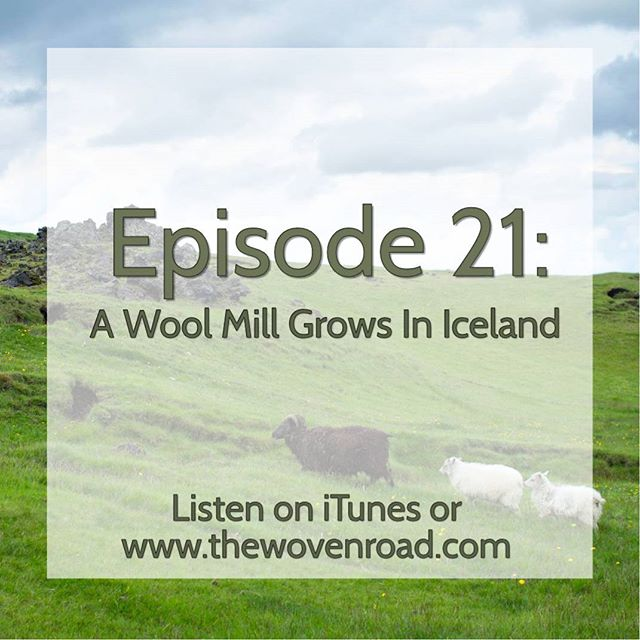 Did you know there is a new small scale wool mill popping up this year in southern Iceland? Learn what that means for our fiber art community in Episode 21, in our new segment on sustainability and ethics. #grassrootstosweater #podcast #knittingpodcast #knitting #crochet #indiedyer #iceland #icelandadventure #icelandicwool #sheep #woolmill #thewovenroad