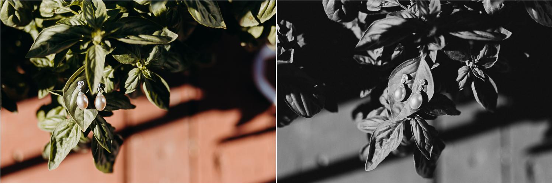Wylie+Emily_Coll-2.jpg