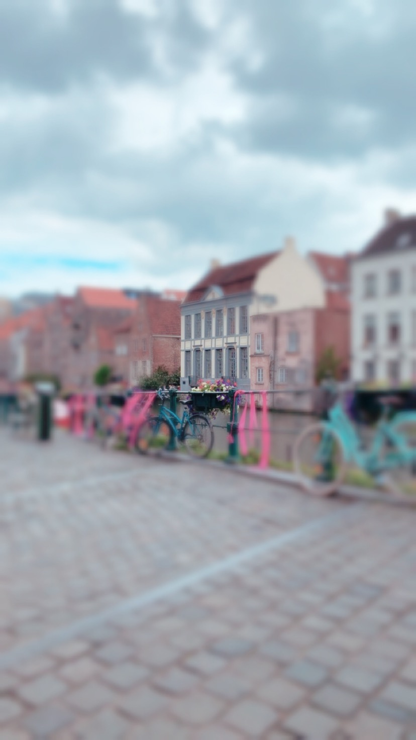 We took a little day trip to Ghent…it was so cute!