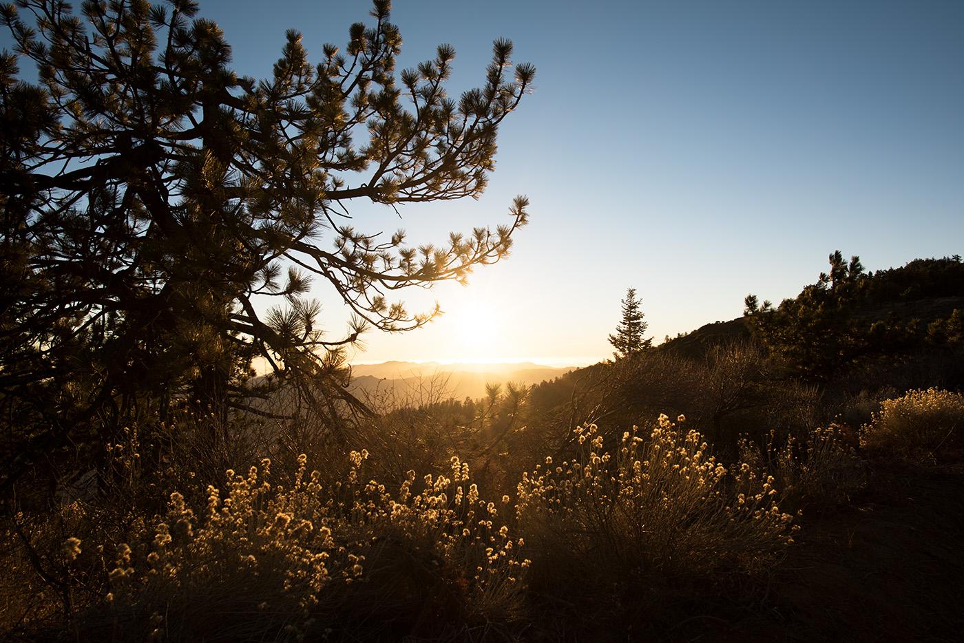 Deborah_Farnault_Sespe_Wilderness_2016_DSC_6065.jpg