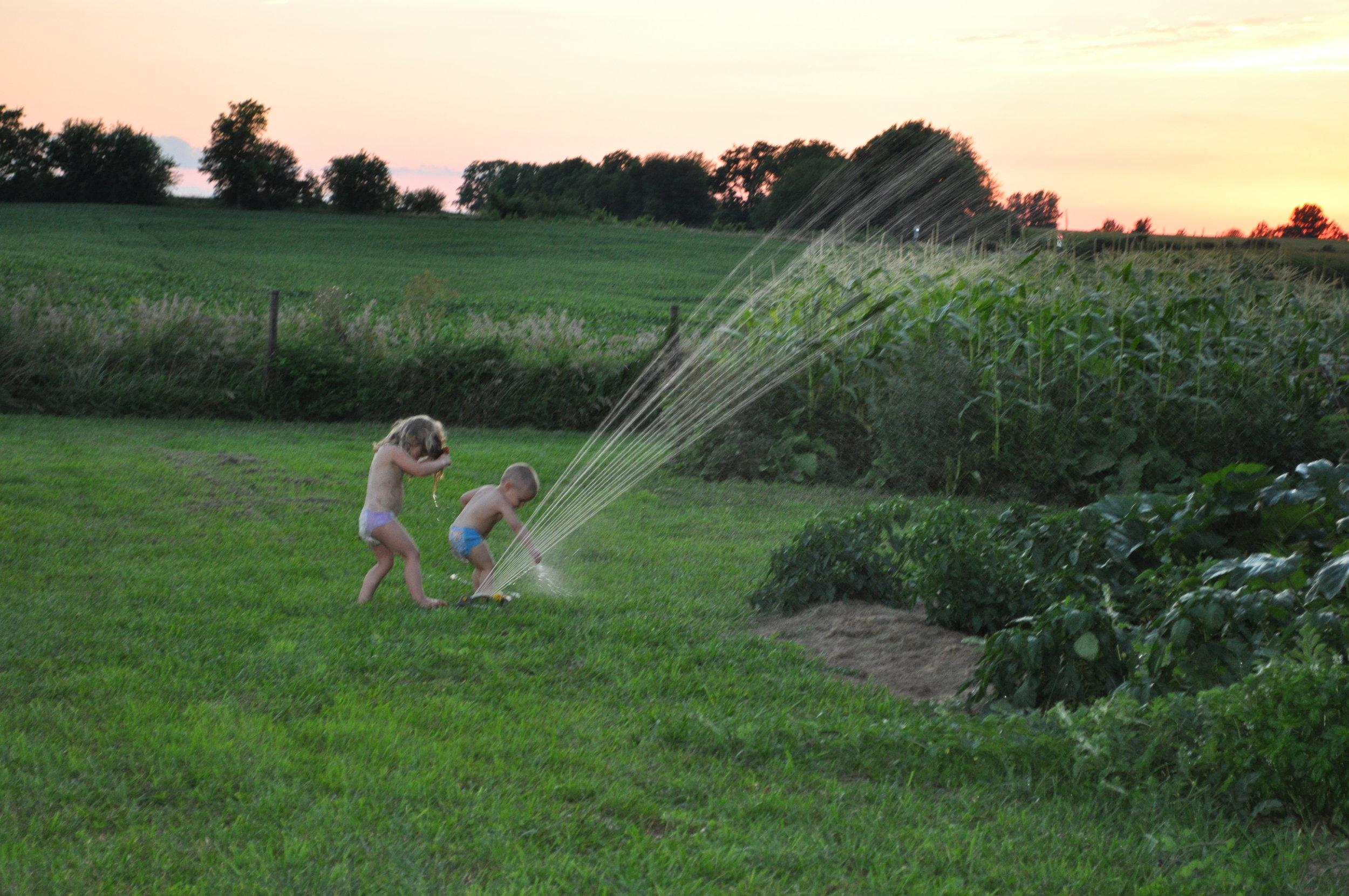 kids sprinkler.JPG