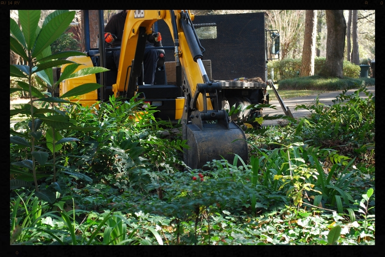 Tallahassee Bainbridge Crawfordville Landscaping and landscape design grading excavation excavating