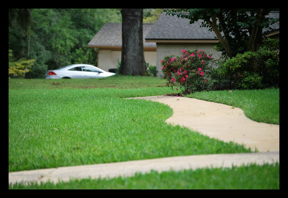 Tallahassee+lawn+care+edging+sidewalk-min.jpg