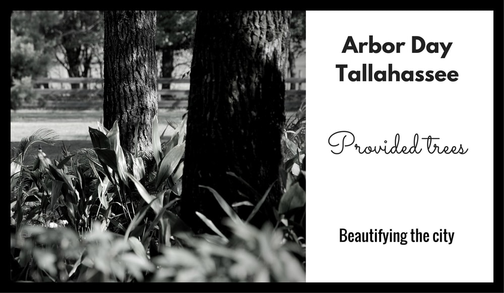 Tallahassee Arbor day-min.jpg