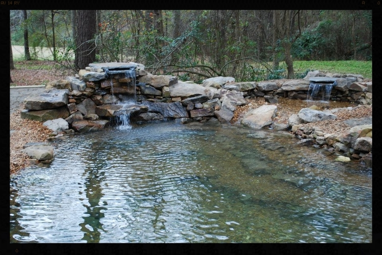water pond landscaping