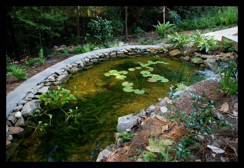 pond and retaining wall landscaping