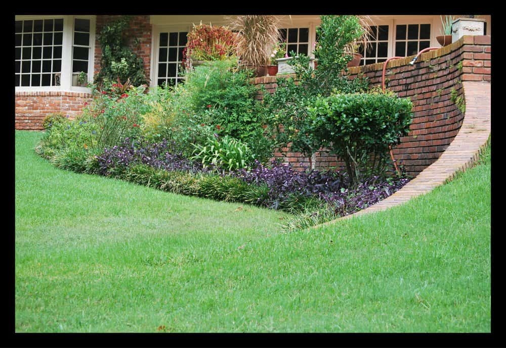 Tallahassee+lawn+care+and+bed+control-min-min.jpg