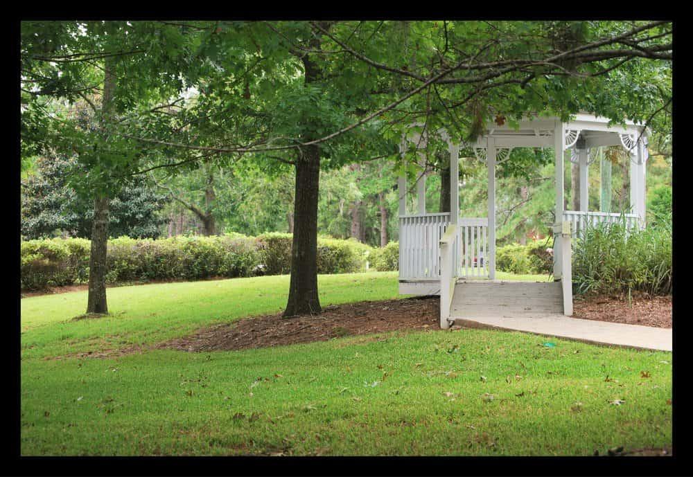 Tallahassee+lawn+maintenance-min-min.jpg