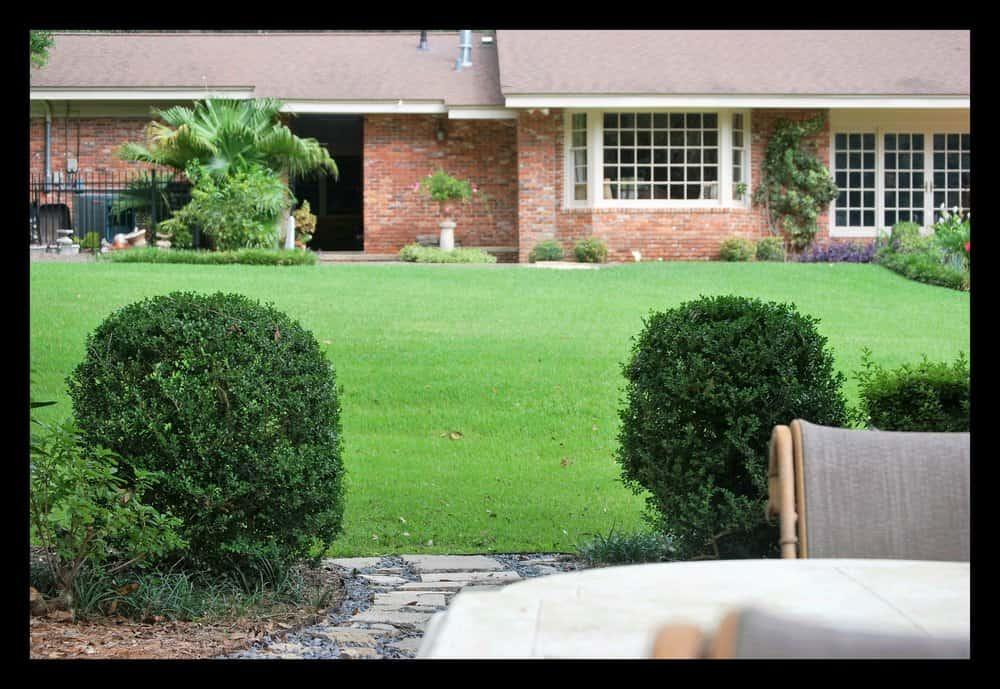 Tallahassee+shrub+clean+up+lawn+care-min-min.jpg