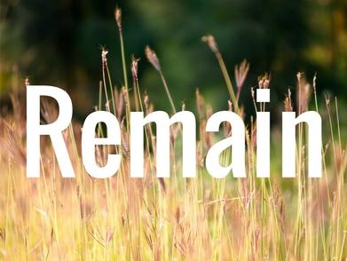 Remain.jpg