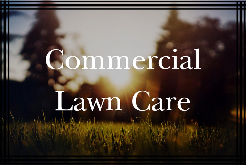 Commercial Lawn Care