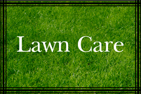Lawn Care Packages