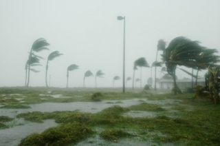 Hurricane, wind and flooding.