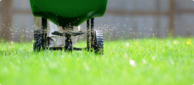 fertilizing.jpg