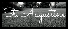 St. Augustine Grass.png