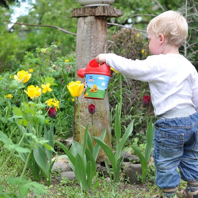 8 First Time Fun and Kid-Friendly Gardening Tips  Blog just posted @ Dickersonlandscaping.com