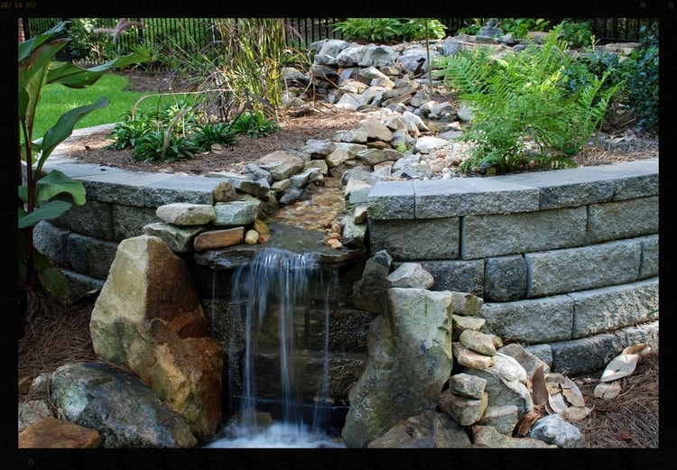 Water Feature and Pond.jpg