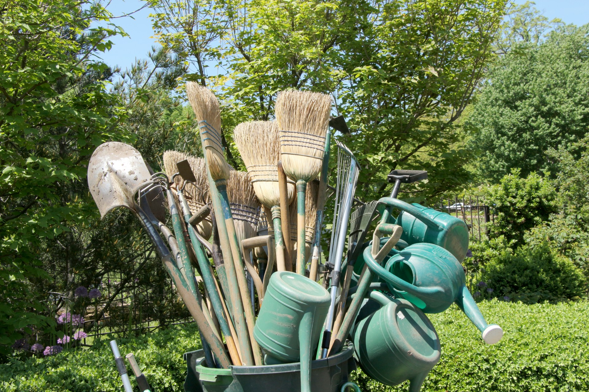 Landscaping Tools in Tallahassee.jpg