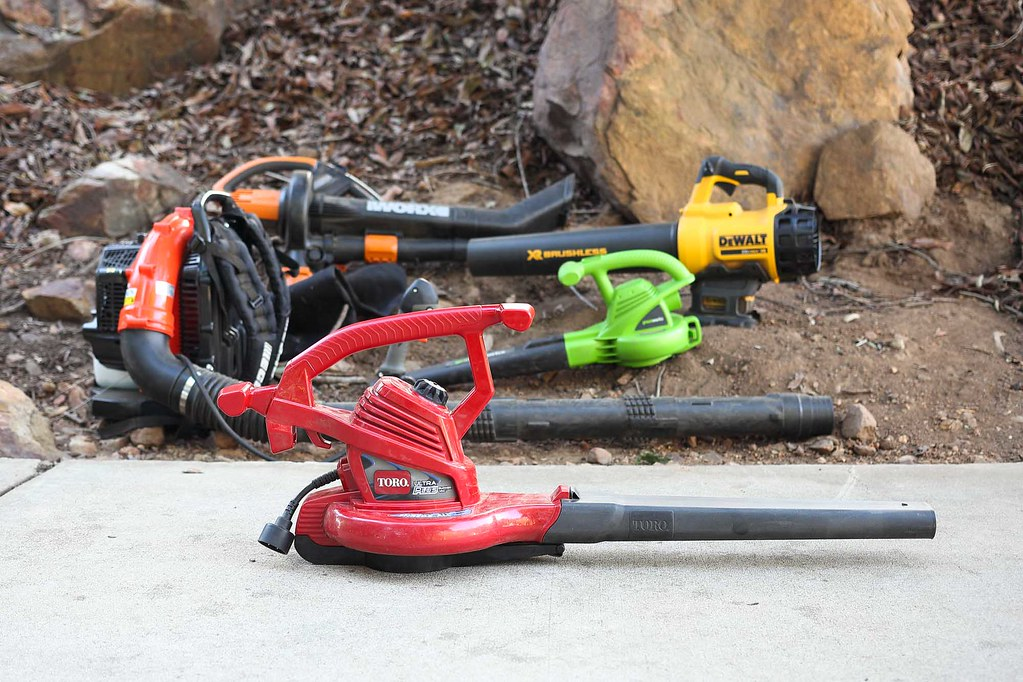 Electric and Gas Powered Leaf Blowers in Tallahassee, Florida.jpg