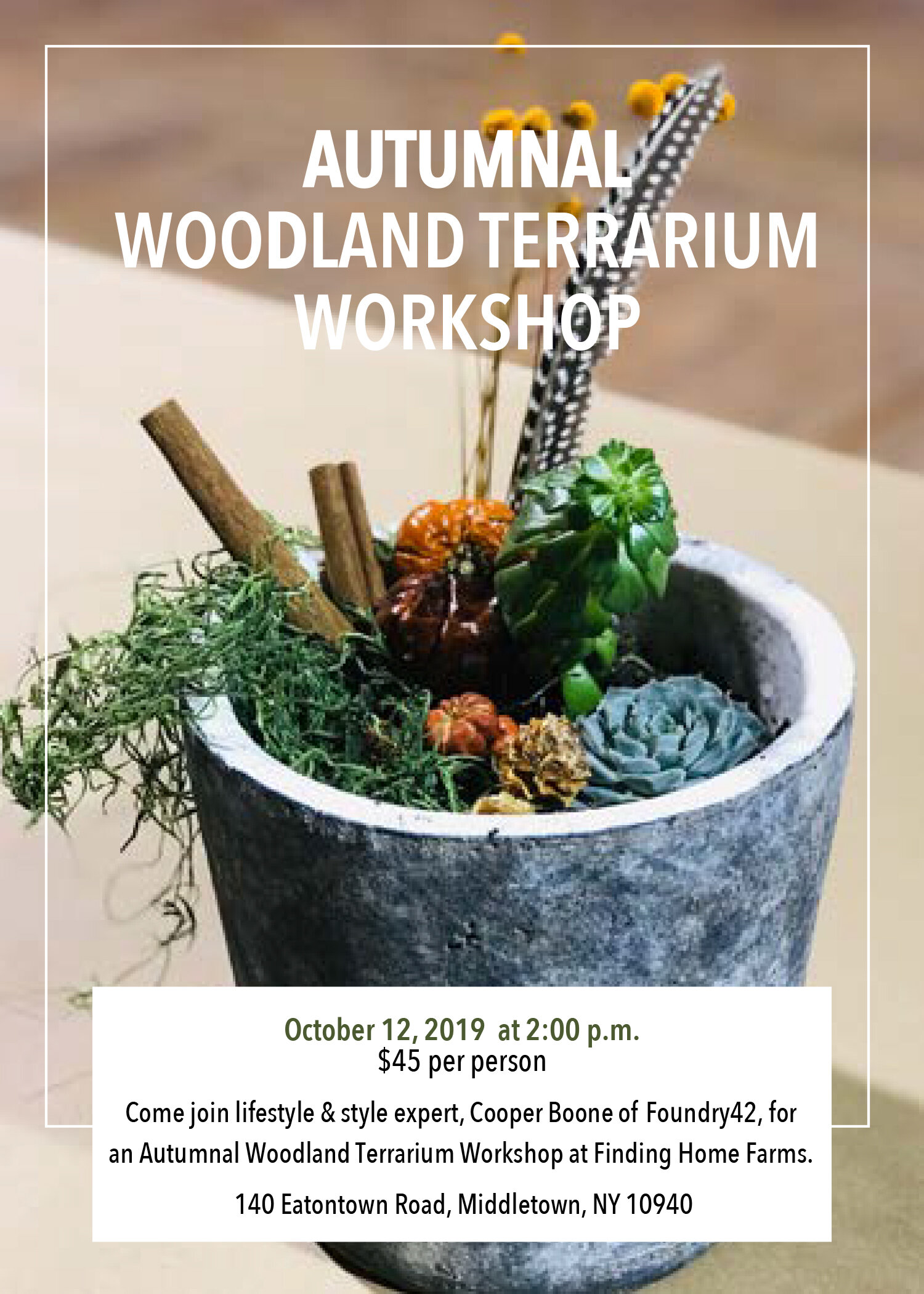 woodlandterrarium.jpg