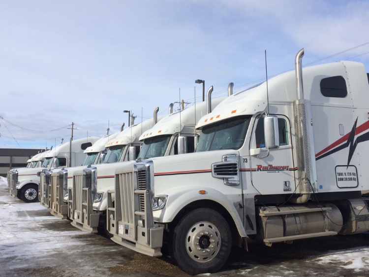Some of our trucks in 2016.