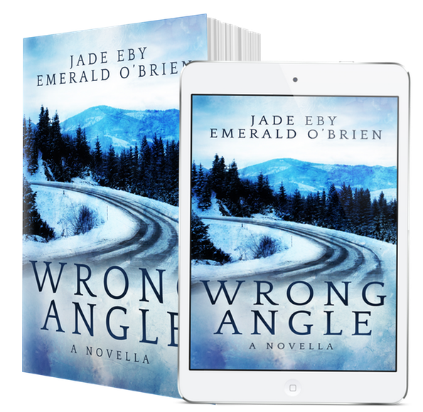 FREE EBOOK FOR NEWSLETTER SUBSCRIBERS! - Get your copy of Wrong Angle by signing up