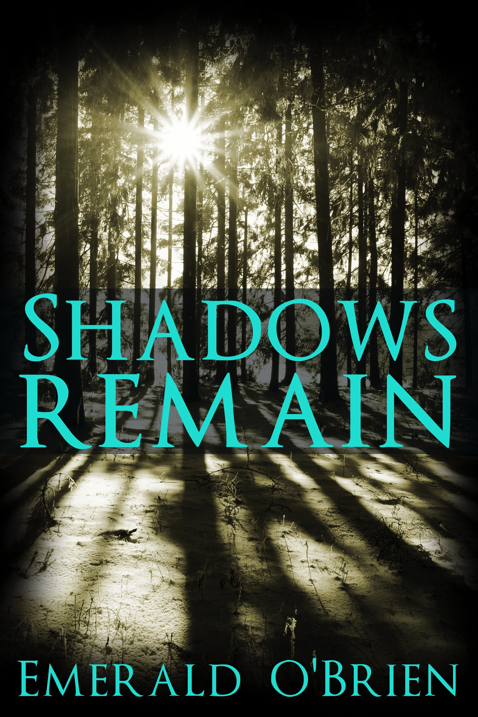 Shadows-Remain-Kindle.jpg