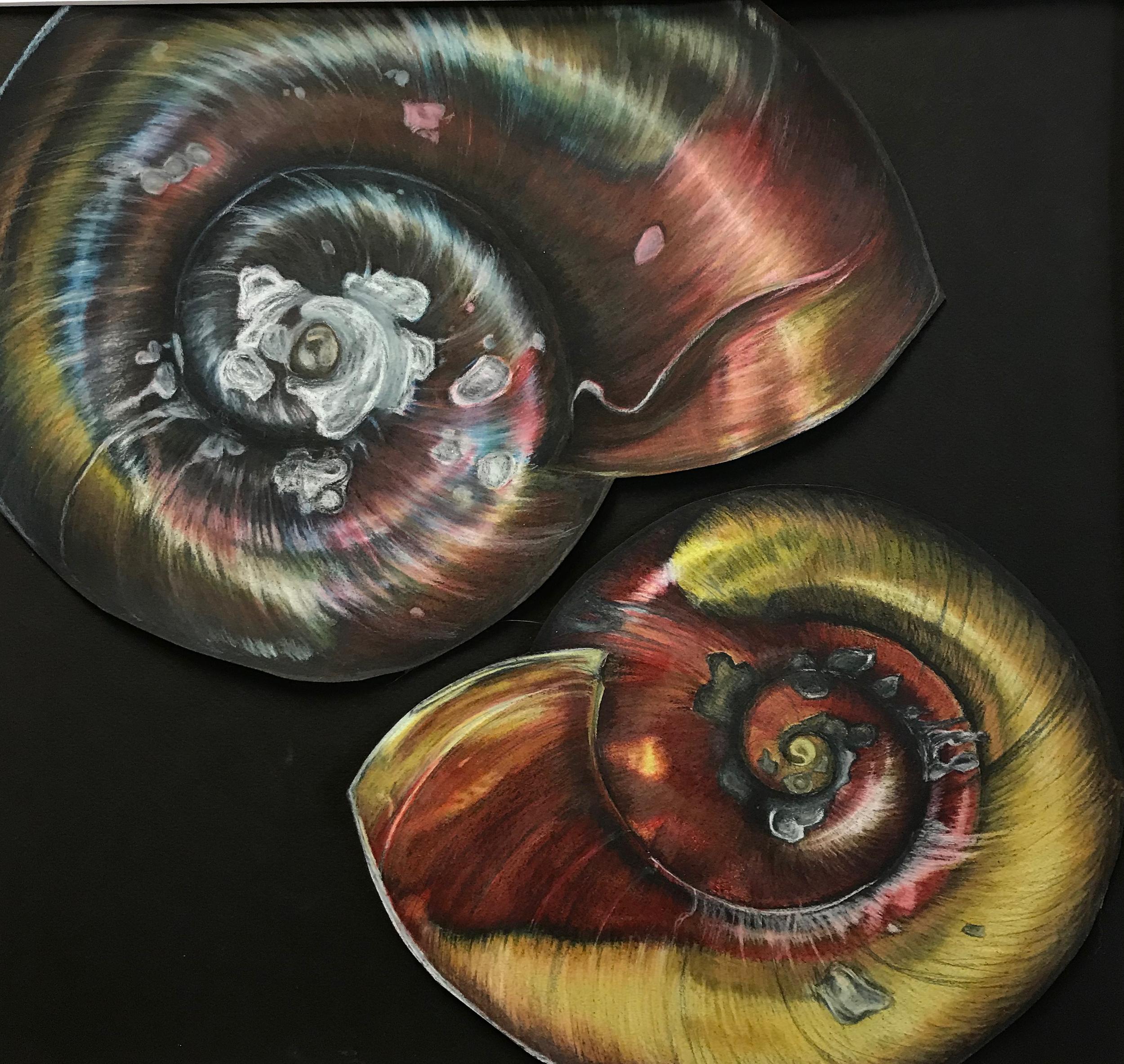 Title: Riverbed, Artist: Sarah Hanson, Scientists: Dr. David Civitello and Dr. Kelsey Shaw