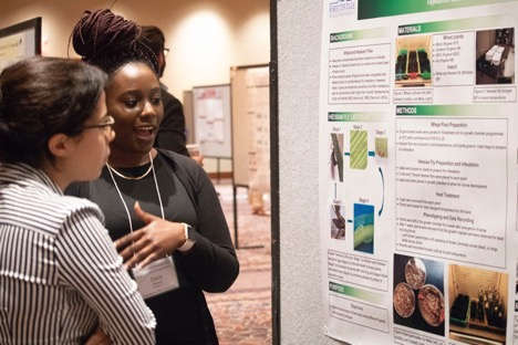 Daria Brown, from Fayetteville StAte University, explaining the Hessian Fly Life Cycle to a curious poster visitor.