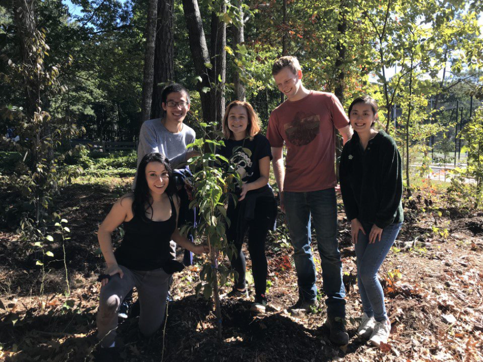 Neuroscience group photo with the last sapling planted.  From left to right: Sydney Sunna (1st year), Thomas Shiu (2nd Year), Caitlin Sojka (1st year), Adam Hamilton (1st year), and Sherry Ye (1st year)