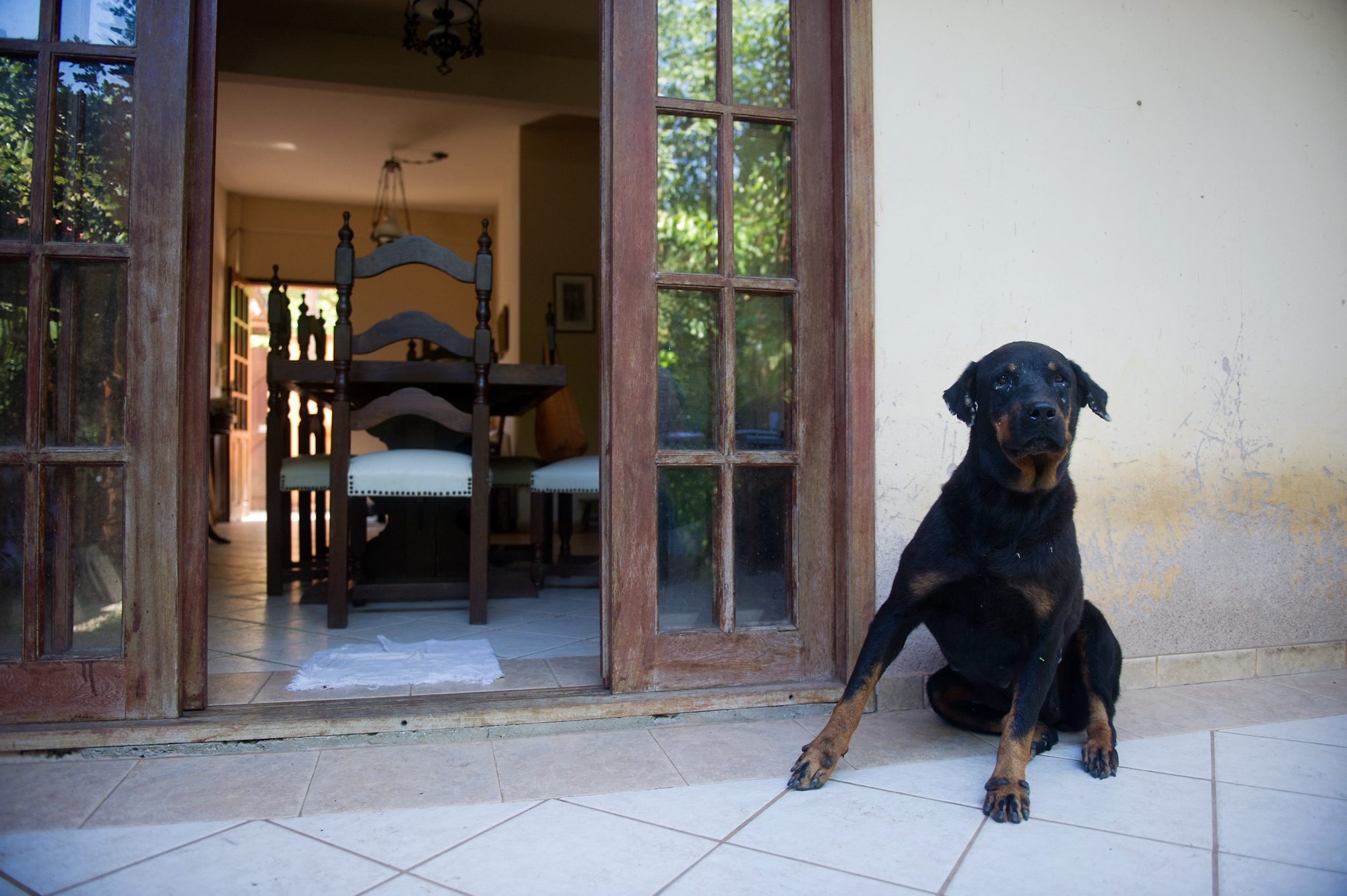 Brito's dog relaxes on the back porch of her home in Vila Autodromo.