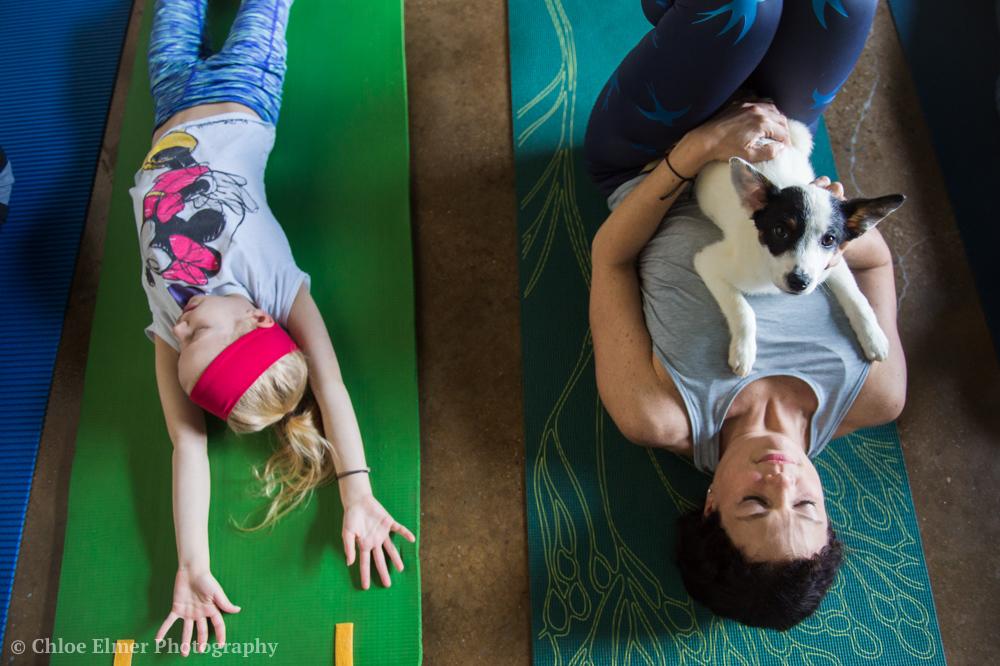 030418 SPCA puppy yoga 18.JPG