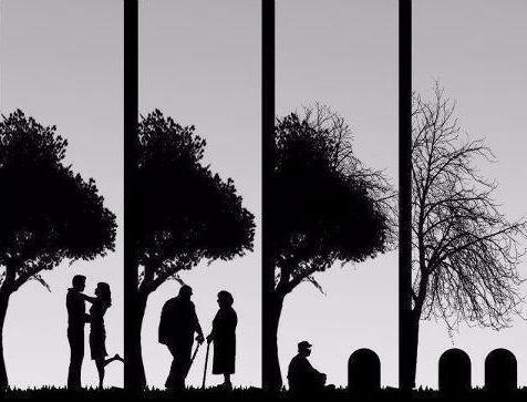 embracingmortality.png