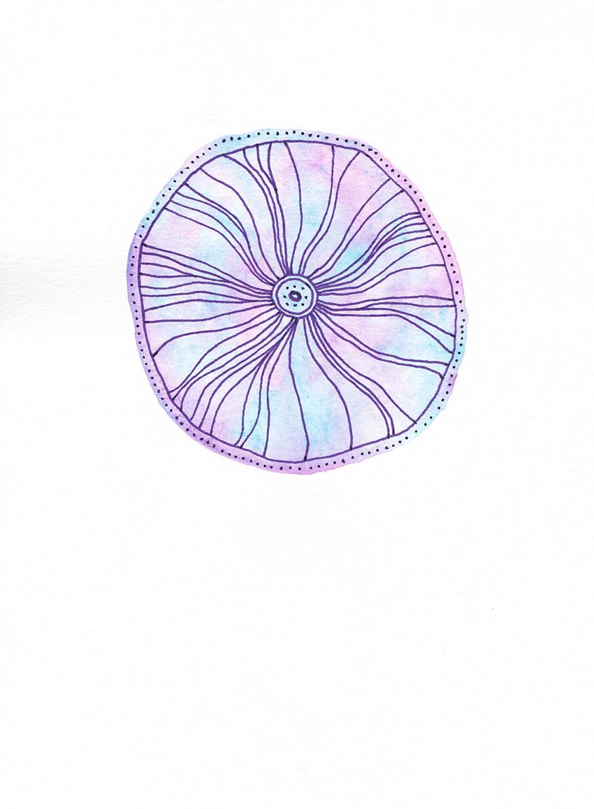 web_purple_flower.jpg