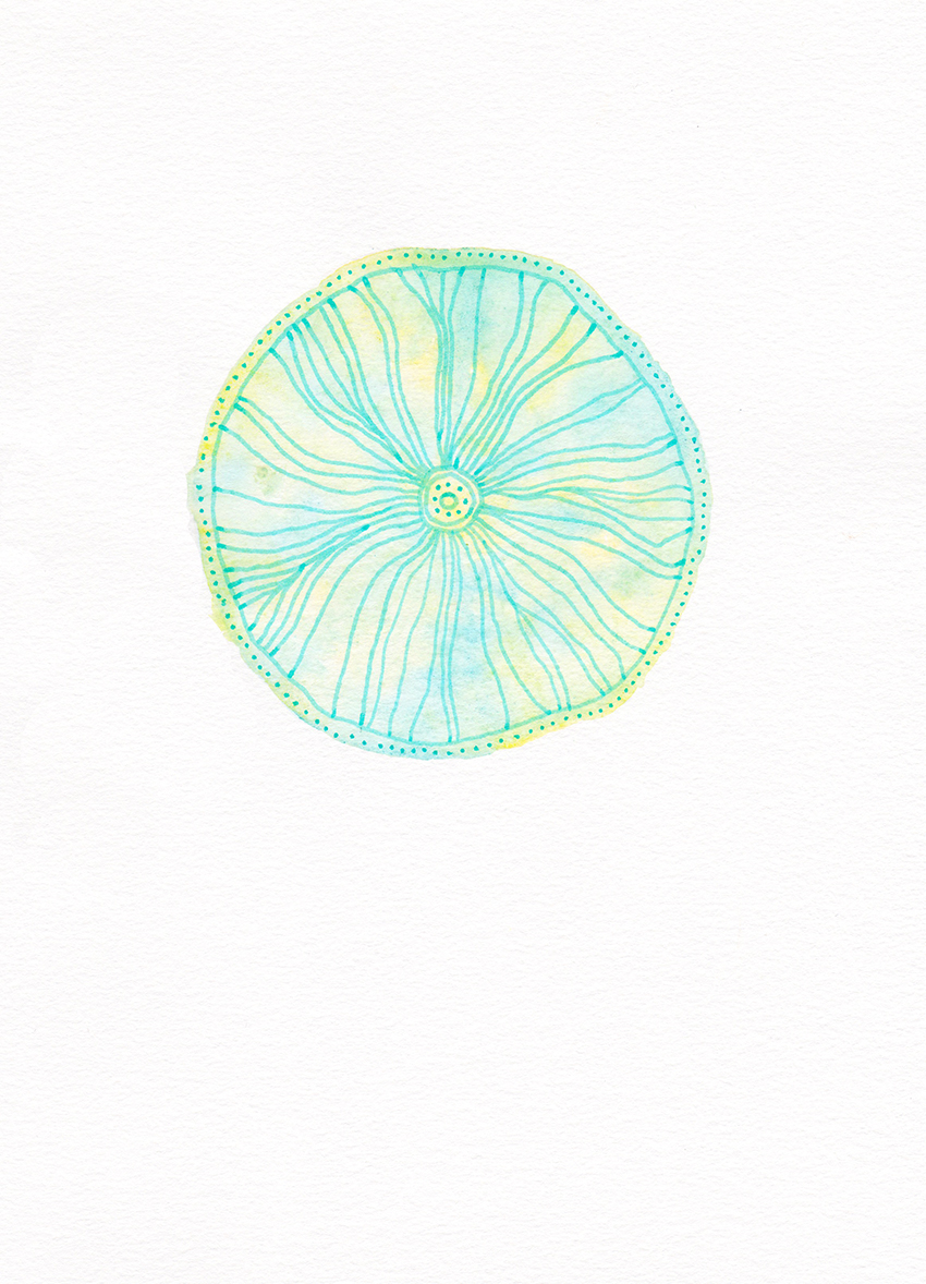 web_turquoise_flower.jpg
