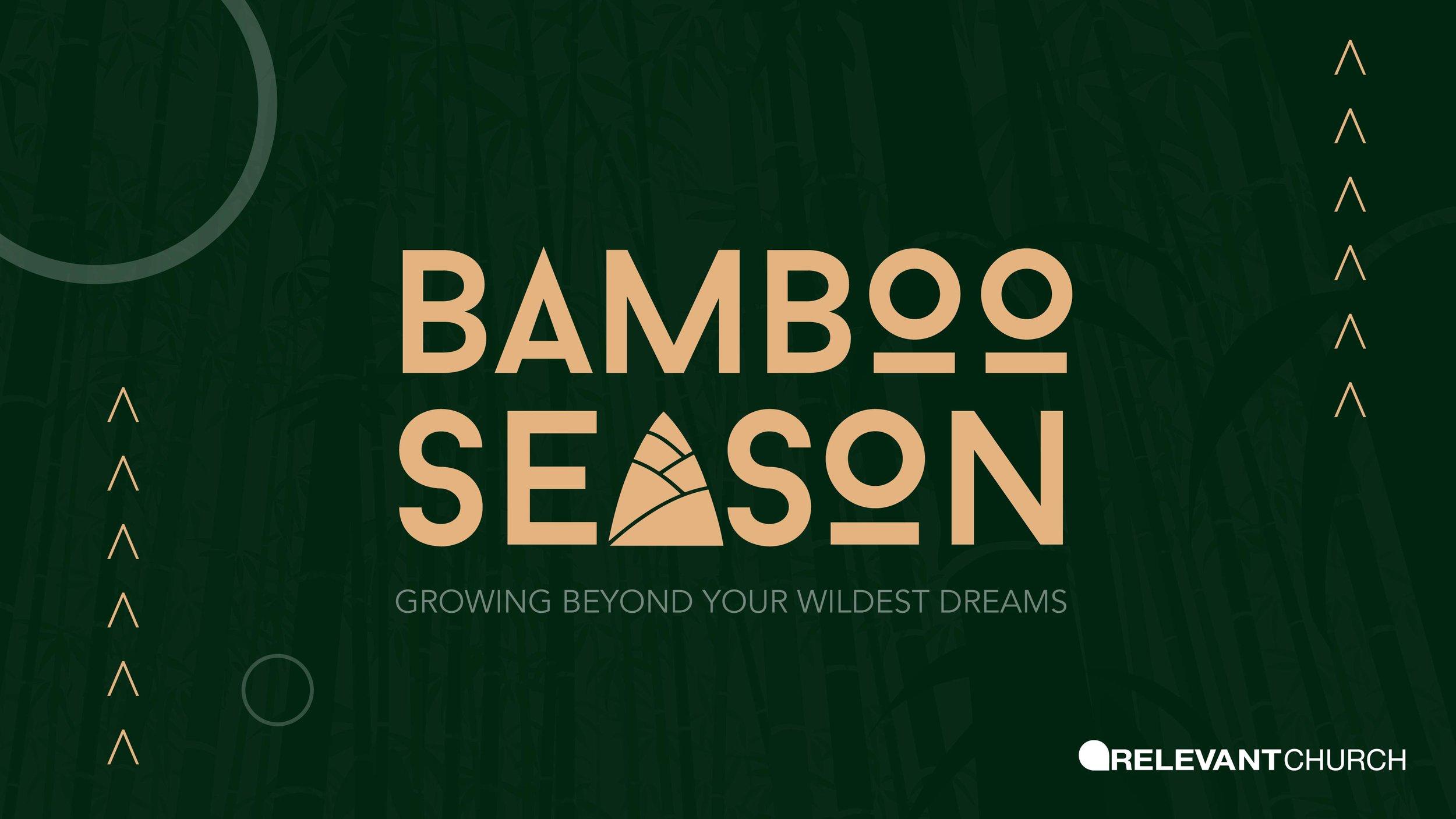 bamboo season 1920x1080.jpg