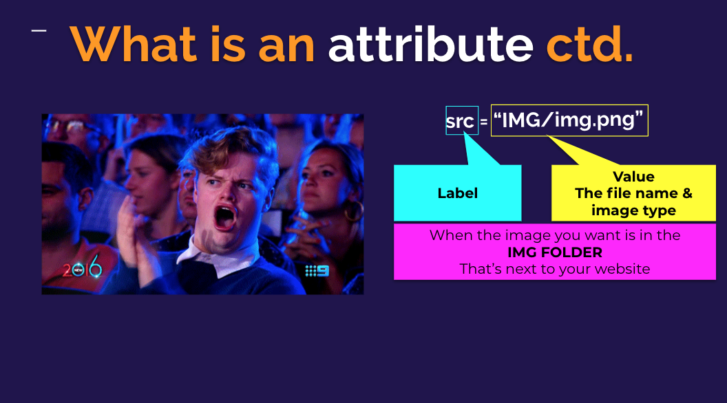 L2C1 - HTML,CSS img attributes SS.png