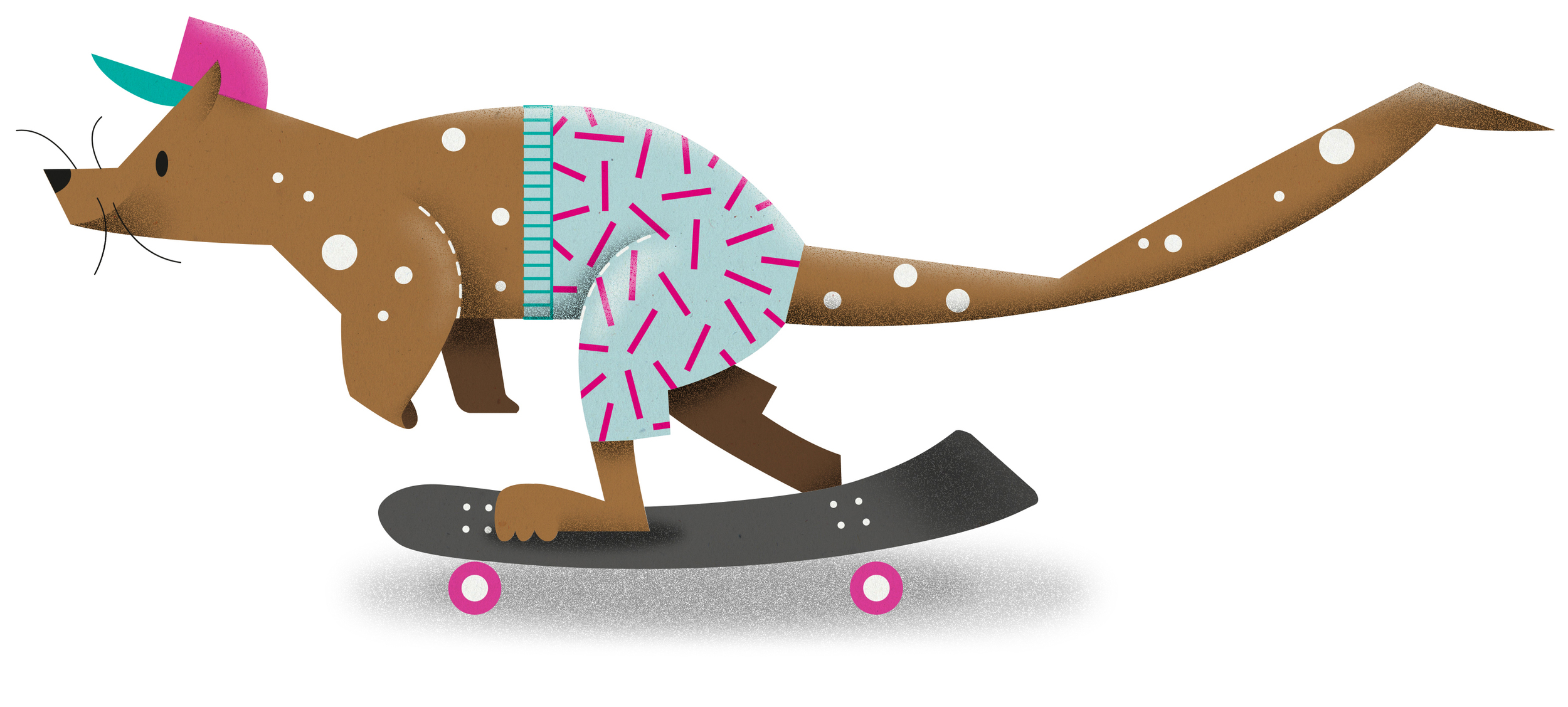 A KNEE-HIGH SPOTTED QUOLL SPOTTED HAVING A SHORT SKATE IN KNEE-LENGTH SKATE SHORTS.