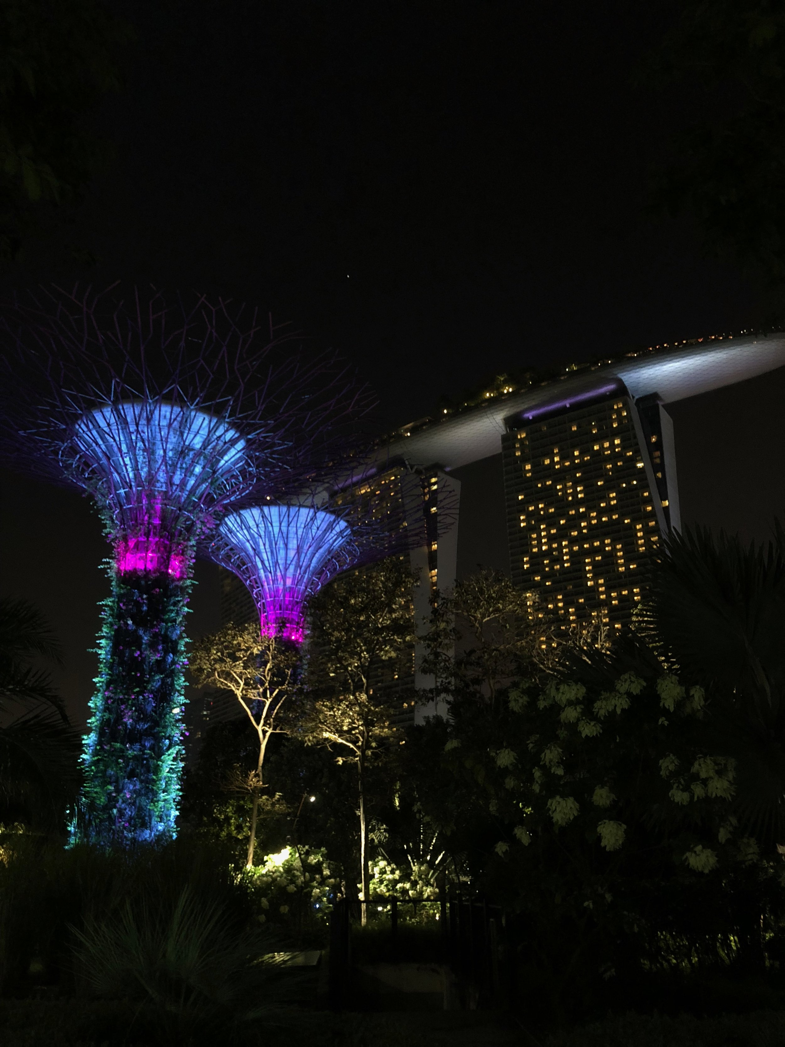 The Super Trees and the famed Marina Bay Sands Hotel.  Photo by Eli Troen #250
