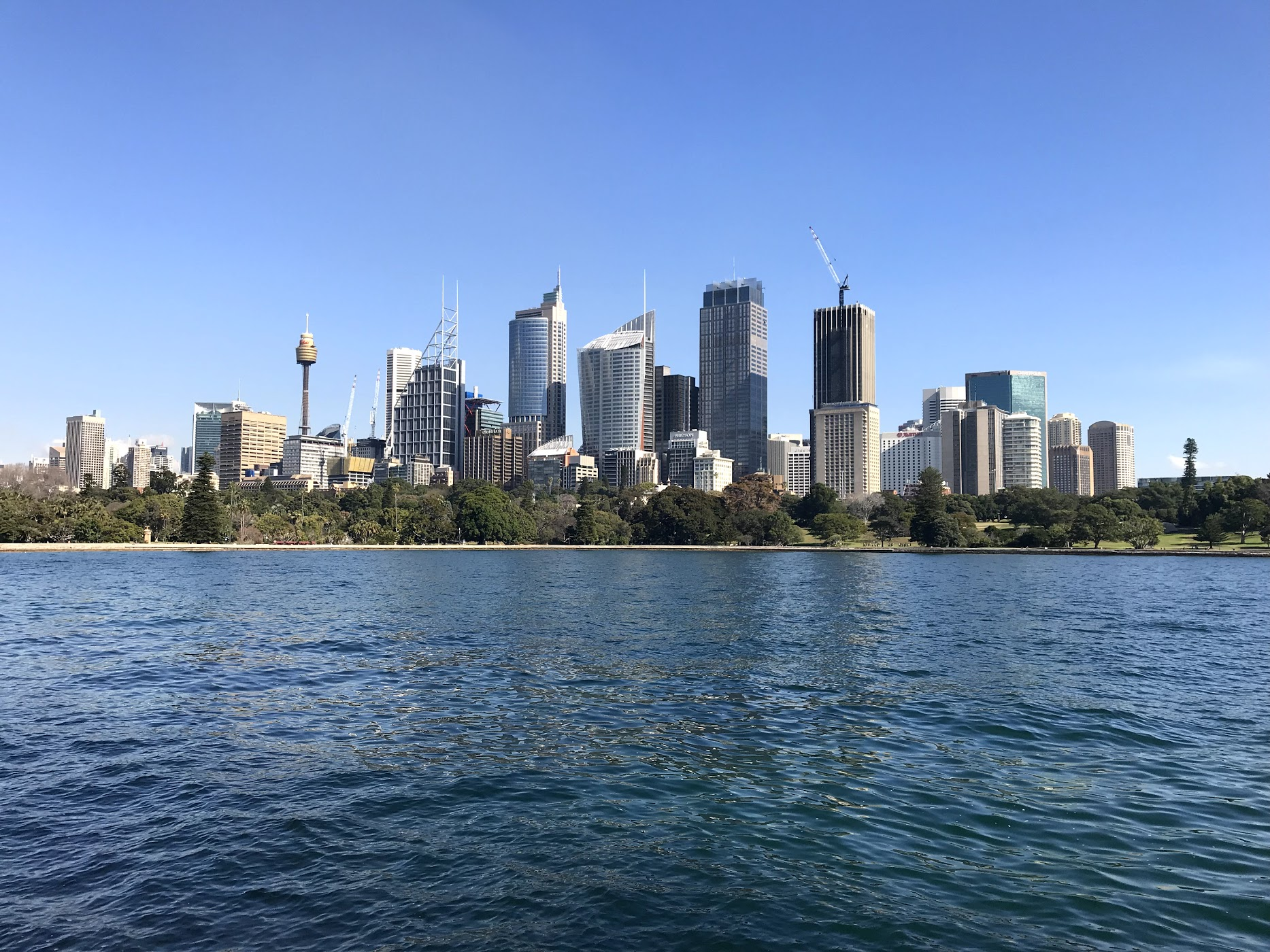 A photo of the Sydney Skyline!  Photo by Kevin Kearns #244