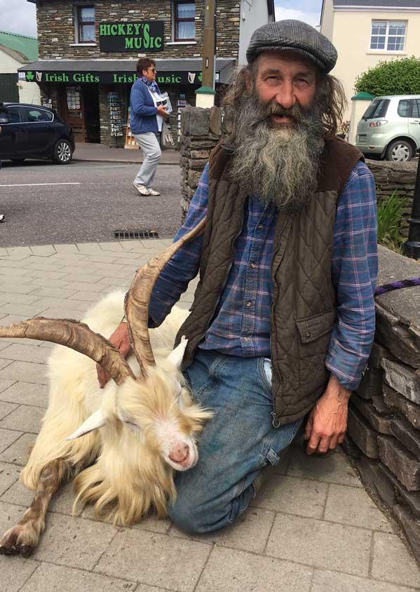 Goat-Ireland-web-2.jpg