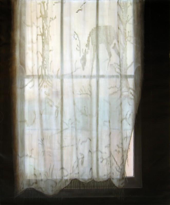 Strange Wilderness - ARTIST AT HOME