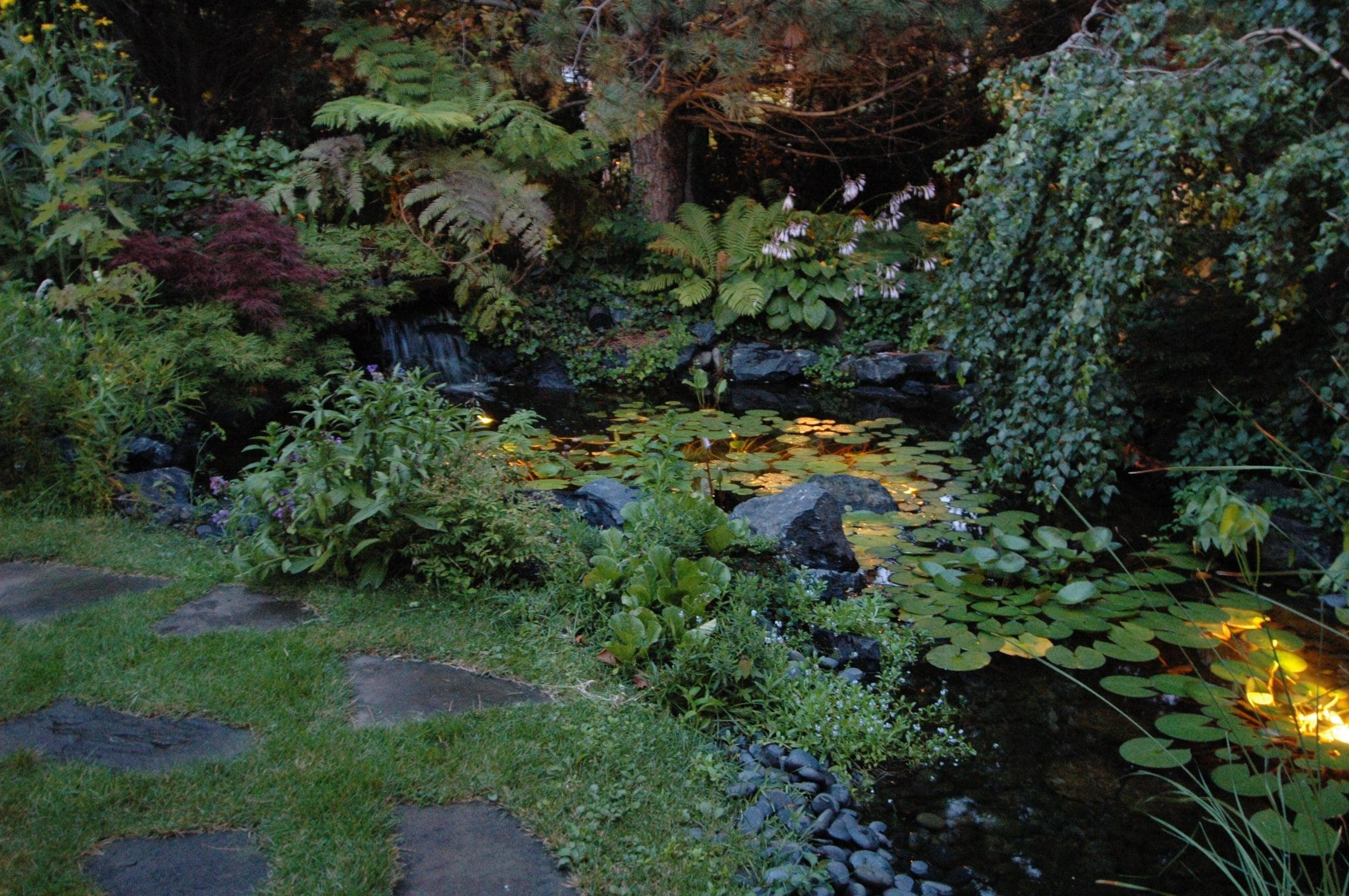 straus night pond.jpg