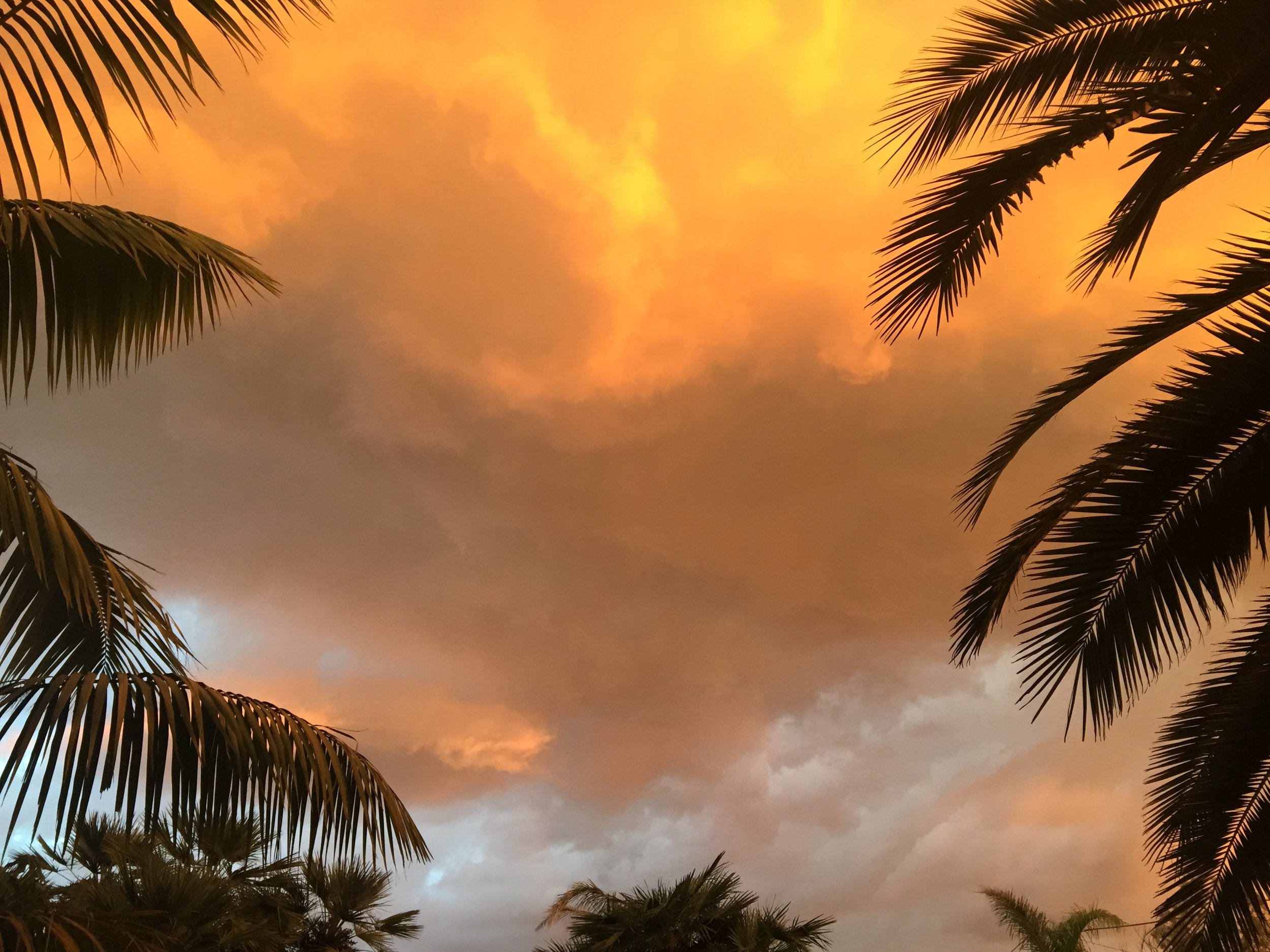Bayview, San Francisco, CA