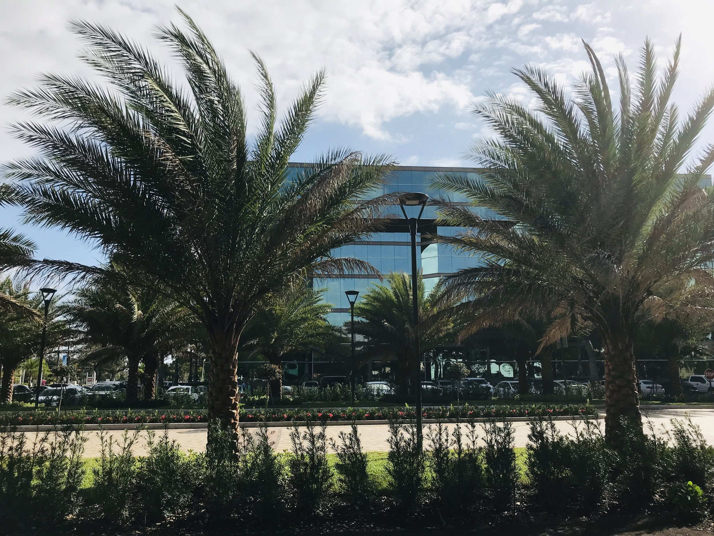 RKB Architects specified the Constitution post-top from LSI industries along with V2 tree spot from Garden Light LED, for this entrance at the Hillsboro Center in Deerfield Beach.