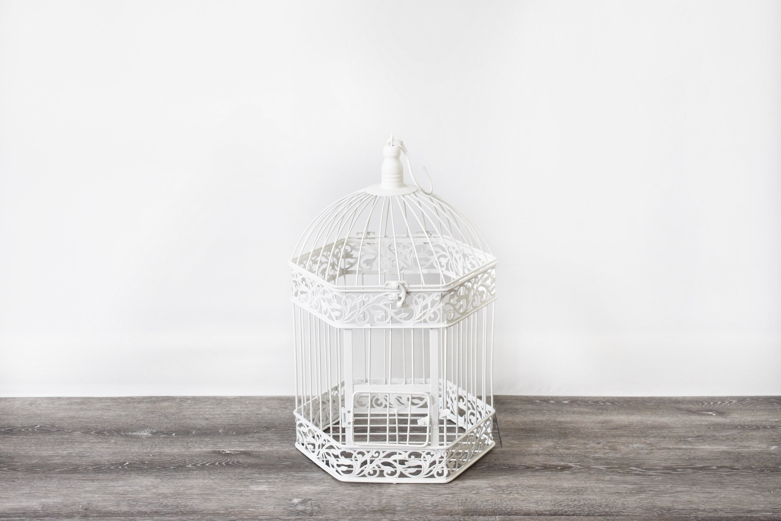 White Hexagon Birdcage