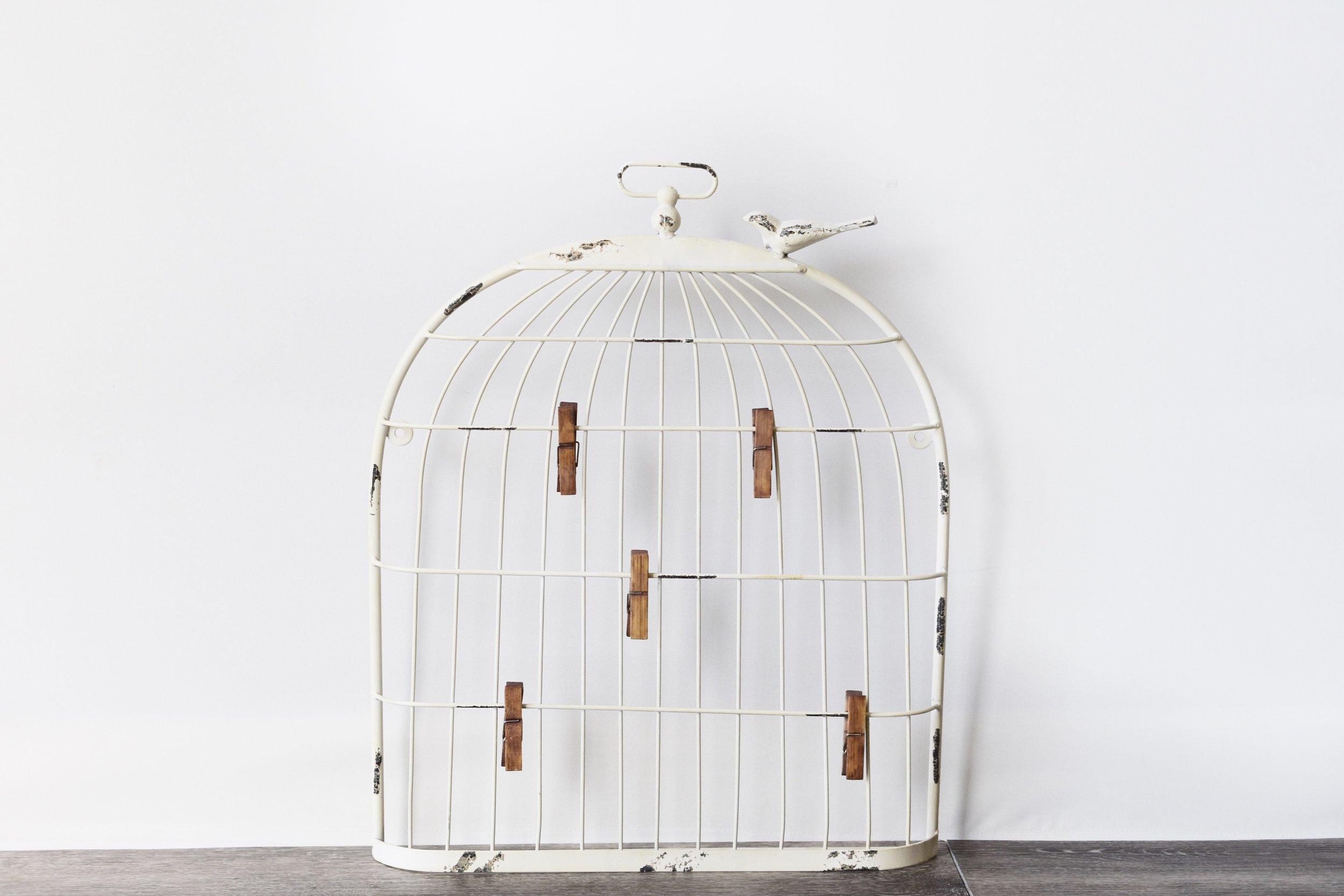 Birdcage Photo Display