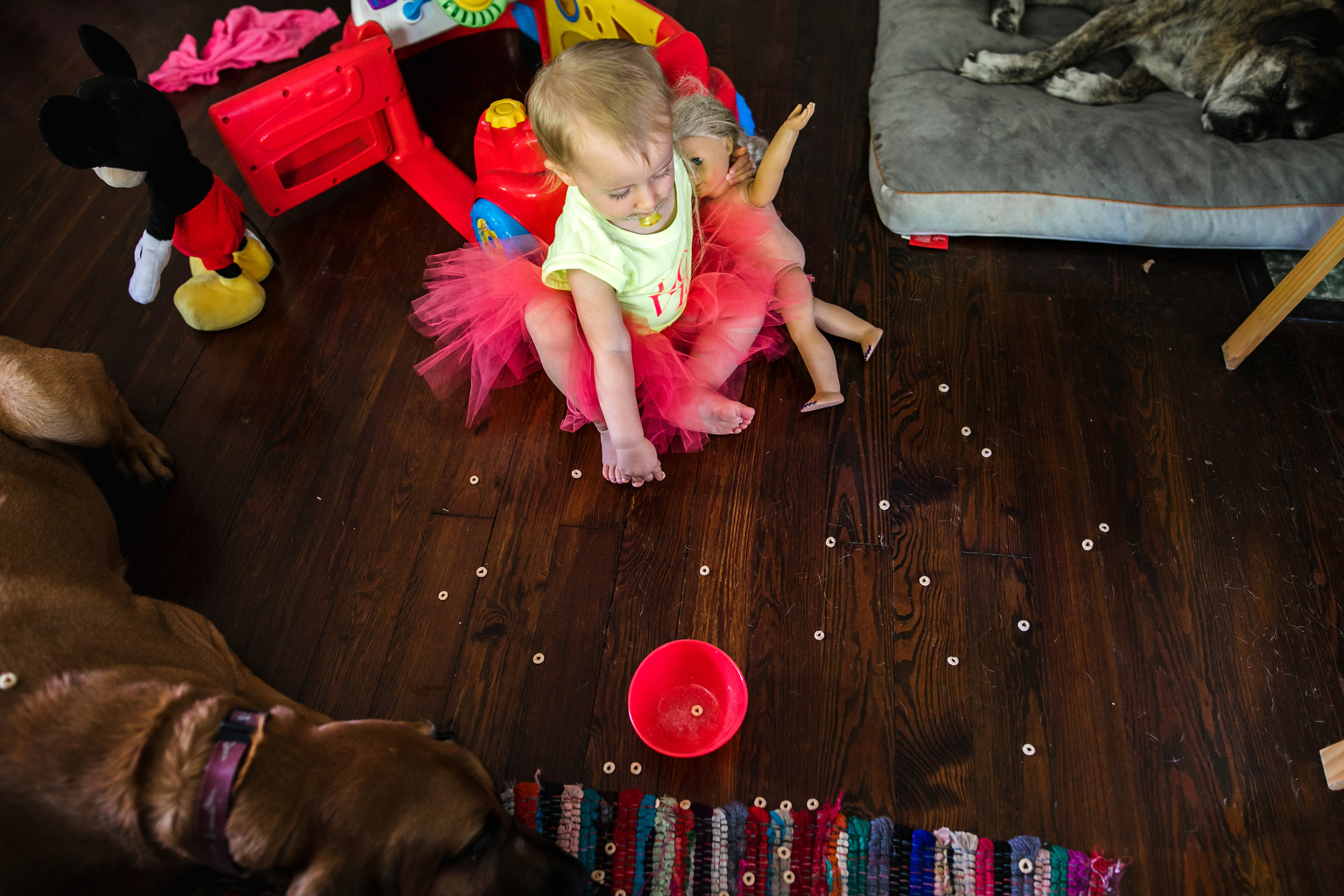 baby spills a snack on living room floor-(ZF-0126-04493-1-054).jpg