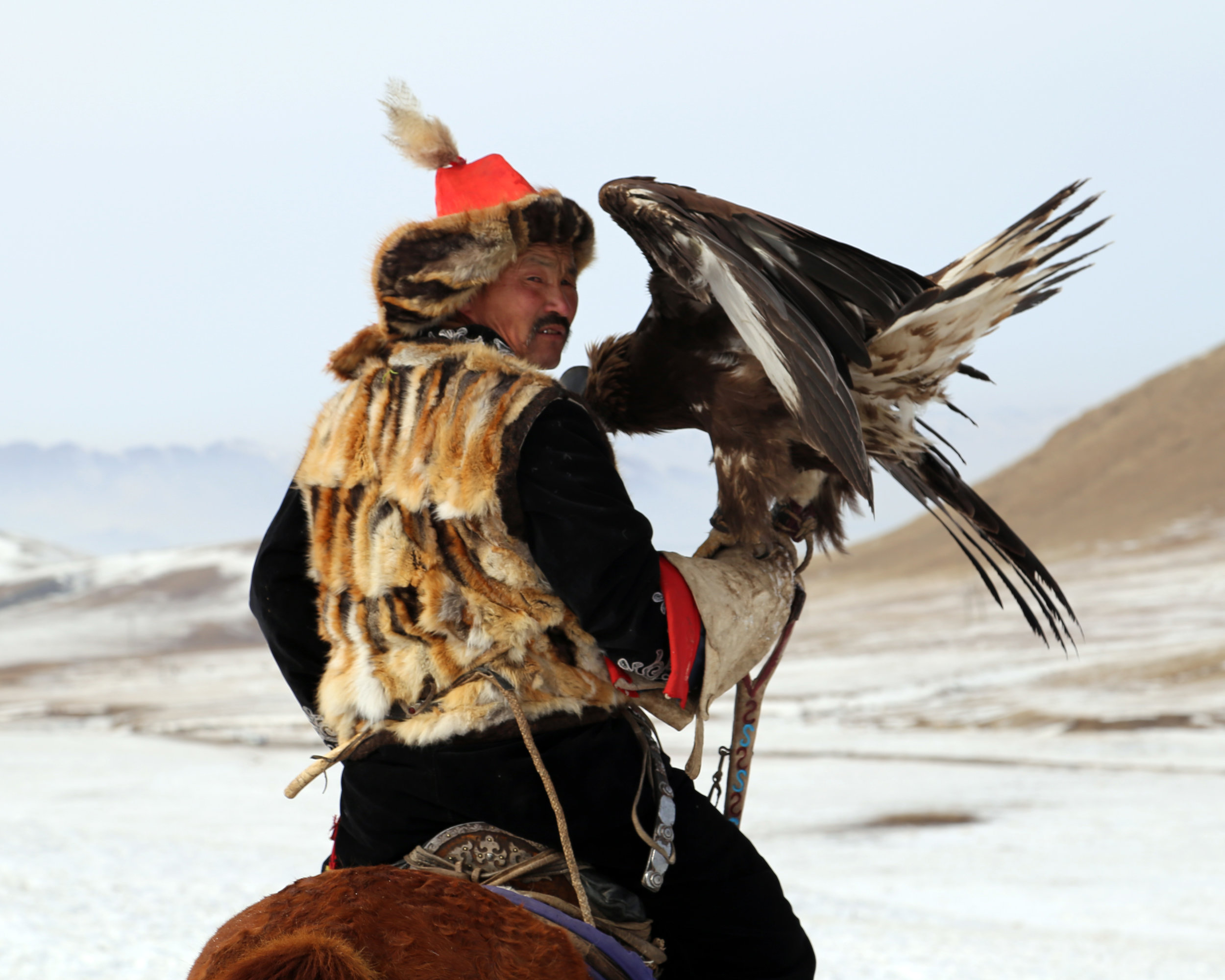 eagle hunters mongolia